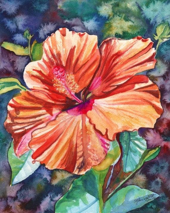 Tropical Hibiscus 5 8x10 print from Kauai Hawaii orange hot