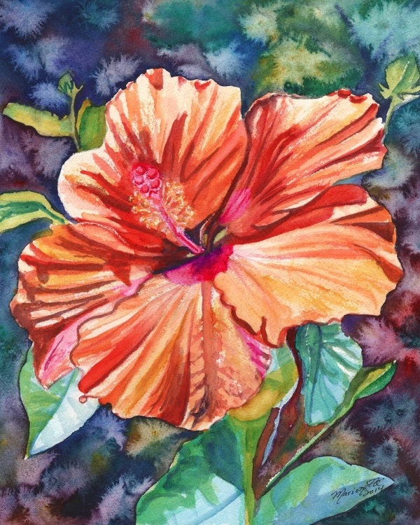 Tropical Hibiscus 5 8x10 Print From Kauai Hawaii Orange Hot
