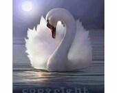 swan art, swan print, swan painting, swan art painting, swan art print, white feathers, white swan, mute swan, white swan art, swan ballet