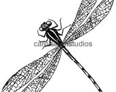 Thermofax Screen Dragonfly