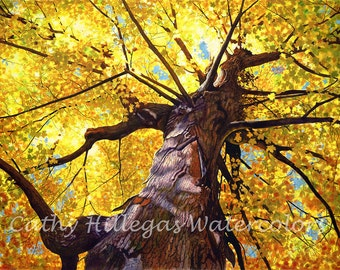 Autumn Tree art watercolor painting print from original by Cathy Hillegas, 12x16, Transcendence, gold, yellow, orange, blue, purple, brown