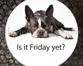 """Boston Terrier - Is it Friday Yet? - Pocket Mirror or Magnet - 2-1/4"""" 2.25"""""""
