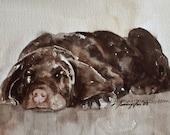 painting of dog painting chocolate labrador painting of labrador chocolate lab painting lab puppy chocolate lab  PRINT 8x10 retriever art