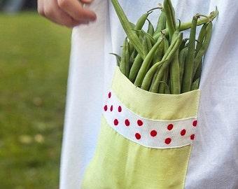 Organic Tendergreen Bush Bean Heirloom Vegetable Seeds
