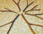 Witch Hazel Twigs, Forked Twigs, Tiny Divining Rods, Dowsing, Magical Tools, Charms, Amulets, Wicca, Druid, Pagan, Craft Supply, Fairy House