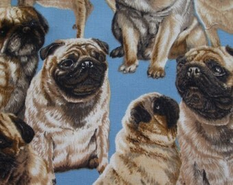 RARE PUG FABRIC on Blue Michael Miller -  1 yard - D2