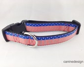 American Dog Collar, USA Flag, 1 inch wide, adjustable, quick release, metal buckle, chain, martingale, hybrid, nylon