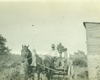 Going Hunting Farm Father Son Holding Long Guns on Horse Wagon Antique Vintage Black and White Photo Photograph