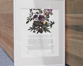 floral ketubah - custom listing for sam l.