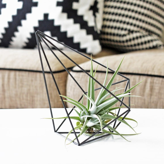 Himmeli Prism no. 1 | Air Plant Holder | Geometric Hanging Mobile | Planter Hanger | Modern Art Sculpture
