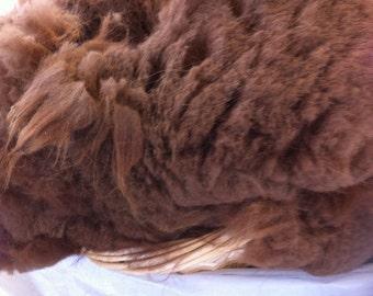 Free Ship - One Pound Raw Llama fiber fleece