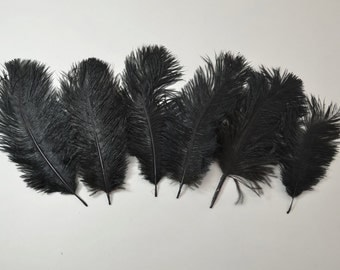 "Petite Ostrich Drab Feathers - Black, 4-8"" (6pcs)"