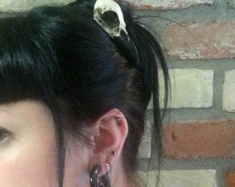 "Mini Raven Skull Hair Clip (2.75"" Small) Resin Cast Skull Hair Accessory Barrette Crow Goth Bird Skull Gothic"