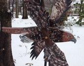 Red-Tailed Hawk Whirligig