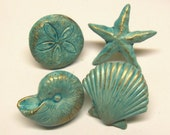 Drawer Pulls Knobs Seashells Starfish Sand Dollar Nautilus Nautical Aqua Ocean Blue Brass Base Beach Set of 4