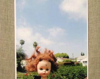 Fine Art Photograph , Doll Art , Altered Doll Art , Fine Art , Photography , Wil Shepherd , Digital , Large Format , Wil Shepherd Studio