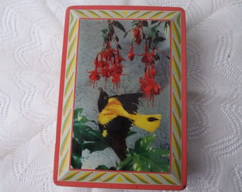 vintage Edward Sharp biscuit DECORATIVE TIN with lid-Made in ENGLAND, bird, yellow