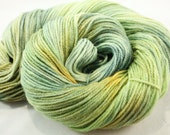 Kettle Dyed Variegated DK or Fingering Weight Yarn- Leafy Greens