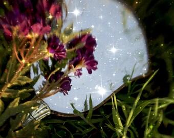 Magic Mirror, Fine Art Photograph, Surreal, 8x10, Blurry, Nature, Flowers, Sparkles, Photo, Dreamy, Green, Purple, Photography, Art, Surreal