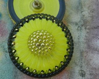 Czech Glass Buttons Bright Yellow Daisy Daisies Flower Sewing Knitting Crochet Shank Button Supplies