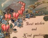 Vintage Postcard - Pink Bleeding Hearts - Forget Me Nots
