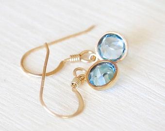 Blue Frost -14K Gold Filled Dangle Earrings