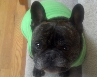 French Bulldog Lime Green Fleece Pullover Jacket with Stand Up Collar