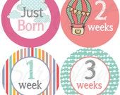 Monthly Stickers for Girls - Up up and Away! - Just Born to 3 Weeks - Hot Air Balloons Kites - Etsykids Team - Etsy Baby - Babys First Year
