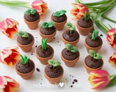 Sweet Sprout Cupcake Toppers ( 12 Sprouts & Terra-cotta pots, 2 Bunnies, 1 message plate )