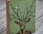 Deer Head - Deer Antler - Leroy's Antlers - Wood Block Art Print