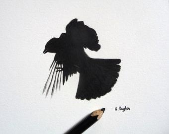 Jackdaw original charcoal sketch, original art, charcoal drawing, pencil drawing, crow drawing, crow art, bird art, bird drawing