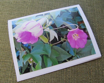 Pretty Pink Flowers Photo card, blank inside,