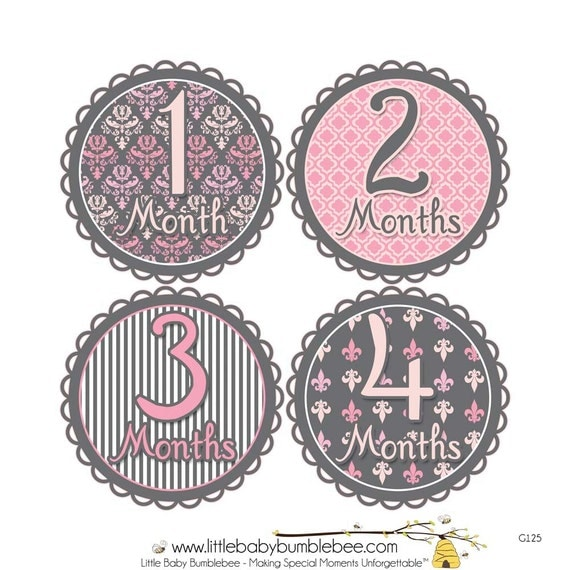 Baby Month Stickers, Monthly Baby Stickers, Monthly Photo Stickers, Girls First Year Photo Props, Baby Shower Gift, Pink Gray (G125)