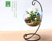 1 pcs  8cm Transparent  Terrarium Hanging Glass with 1 pcs Black Metal Hanging Frame