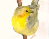 Birds Watercolor Print Yellow Bird on a Branch