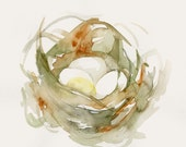Birds Nest Painting Fine Art Print from Original Watercolor