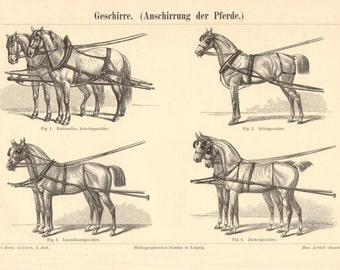 1895 Harness for Horses Original Antique Engraving to Frame