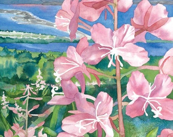 Fireweed and the Homer Spit