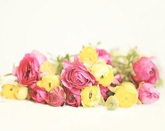 Pink and Yellow flower photography, Ranunculus Print, Nursery Decor, ranunculus photo art print, floral print flower photography nursery art