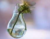 Hanging Planter Vase / Hand Blown Glass Art / Transparent Sea Glass Green / Coastal Decor / Glass Wall Vase