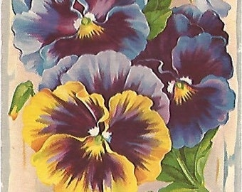 Best Wishes Purple and Yellow Pansies on Wood Grain Background Vintage Postcard