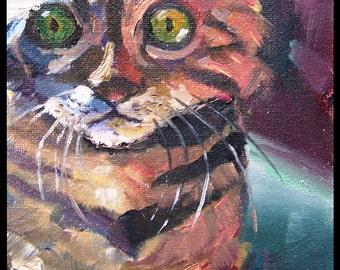 Framed Cat Impressionist Art Oil Painting Original impasto style Cat Kitten Kitty Hawkins