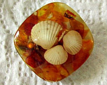 vintage 40s amber lucite sea shell pin brooch  shells inside lucite hand made Florida souvenir