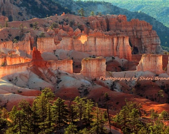 "Sunrise Spectacular at Bryce  8"" x 12"" Fine Art Photography"