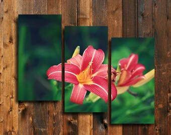 Lovely Lilly - Lilly Flower - Lilly photography - Pink and green decor - Pink Lilly - Pink and green art - Lilly art - Lilly Canvas