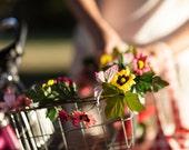 Bike basket garland - daisy Petal Brite