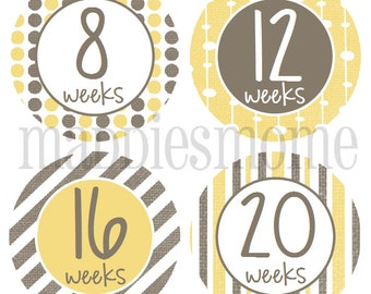 Weekly Pregnancy Stickers, Belly Stickers, Baby Bump Stickers, Maternity Stickers, Baby Belly Stickers, Month Stickers - (Yellow and Gray)