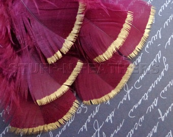 GOLD DIPPED burgundy feathers, metallic gold tip hand painted loose small real turkey feathers / 3-5 in (7.5-12.5 cm) long, 6 pcs / 116-3G