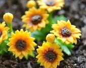 1 - Miniature Sunflower Flower Glass Terrarium Filler Hand Made Clay Plant Charm Scale 1:12 Terrarium Jewelry Making Supplies (AU092)