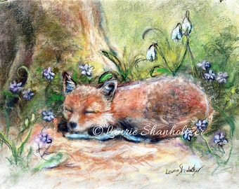 "Fox - ORIGINAL pastel painting - woodland wildlife, Sleepy baby  Nursery art, child decor ""Sleepy Fox and Flowers"" by Laurie Shanholtzer"